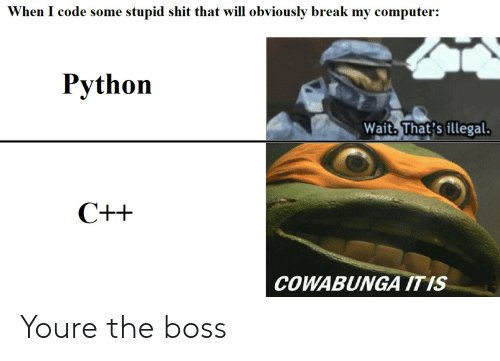 Shit, Break, and Computer: When I code some stupid shit that will obviously break my computer:  Python  Wait. That's illegal  COWABUNGA ITIS Youre the boss