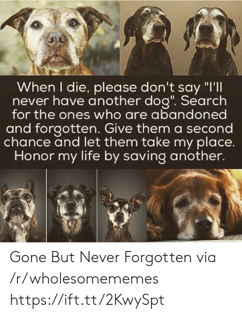 "chance: When I die, please don't say ""I'll  never have another dog"". Search  for the ones who are abandoned  and forgotten. Give them a second  chance and let them take my place.  Honor my life by saving another. Gone But Never Forgotten via /r/wholesomememes https://ift.tt/2KwySpt"