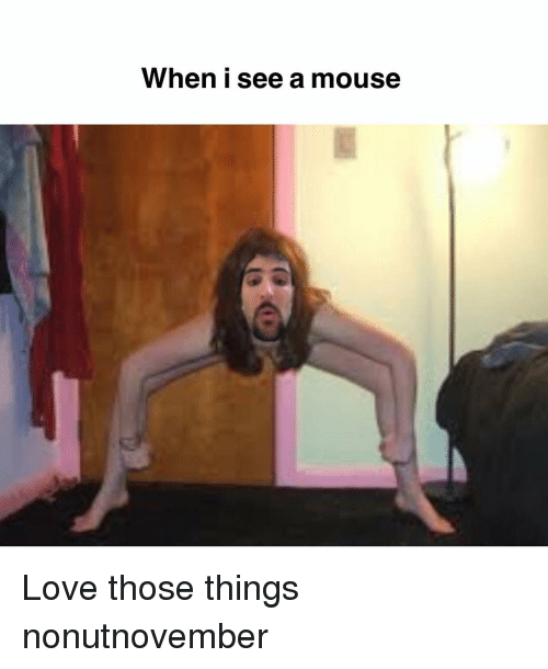 Love, Memes, and Mouse: When i see a mouse Love those things nonutnovember