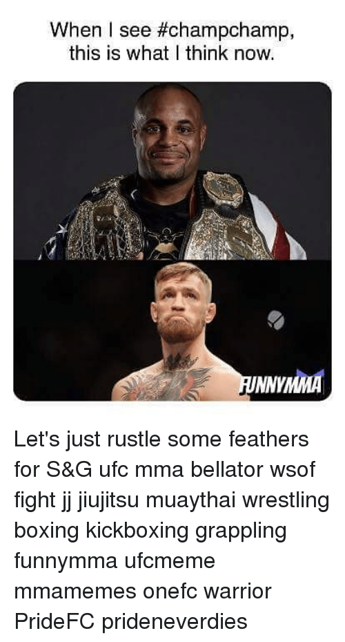 Rustle: When I see #champchamp,  this is what I think now. Let's just rustle some feathers for S&G ufc mma bellator wsof fight jj jiujitsu muaythai wrestling boxing kickboxing grappling funnymma ufcmeme mmamemes onefc warrior PrideFC prideneverdies