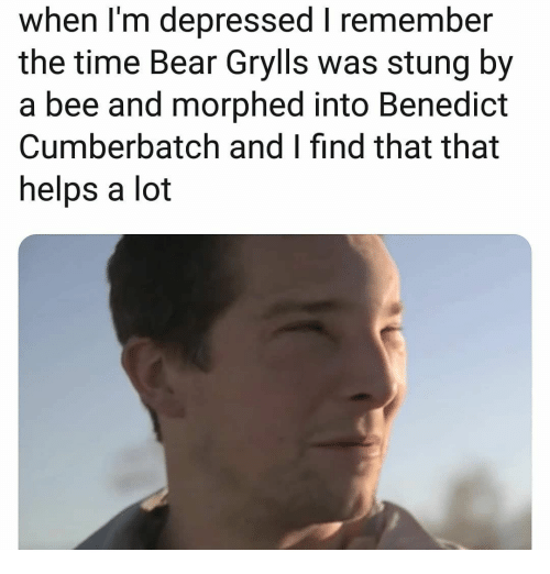 Bear Grylls: when I'm depressed I remember  the time Bear Grylls was stung by  a bee and morphed into Benedict  Cumberbatch and I find that that  helps a lot