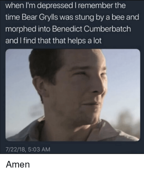 Bear Grylls: when I'm depressed I remember the  time Bear Grylls was stung by a bee and  morphed into Benedict Cumberbatch  and I find that that helps a lot  7/22/18, 5:03 AM Amen
