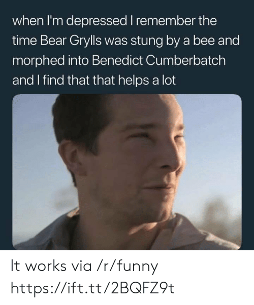 Bear Grylls: when I'm depressed I remember the  time Bear Grylls was stung by a bee and  morphed into Benedict Cumberbatch  and I find that that helps a lot It works via /r/funny https://ift.tt/2BQFZ9t