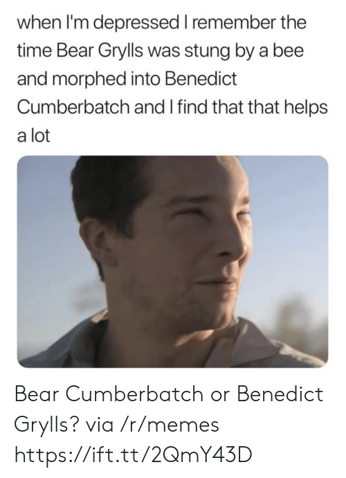 Bear Grylls: when I'm depressed I remember the  time Bear Grylls was stung by a bee  and morphed into Benedict  Cumberbatch and I find that that helps  a lot Bear Cumberbatch or Benedict Grylls? via /r/memes https://ift.tt/2QmY43D