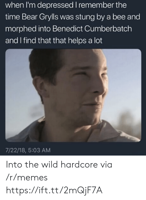 Bear Grylls: when I'm depressed I remember the  time Bear Grylls was stung by a bee and  morphed into Benedict Cumberbatch  and I find that that helps a lot  7/22/18, 5:03 AM Into the wild hardcore via /r/memes https://ift.tt/2mQjF7A