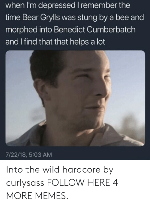 Bear Grylls: when I'm depressed I remember the  time Bear Grylls was stung by a bee and  morphed into Benedict Cumberbatch  and I find that that helps a lot  7/22/18, 5:03 AM Into the wild hardcore by curlysass FOLLOW HERE 4 MORE MEMES.
