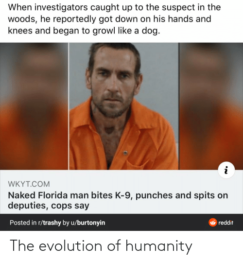 k-9: When investigators caught up to the suspect in the  woods, he reportedly got down on his hands and  knees and began to growl like a dog.  WKYT.COM  Naked Florida man bites K-9, punches and spits on  deputies, cops say  Posted in r/trashy by u/burtonyin  O reddit The evolution of humanity