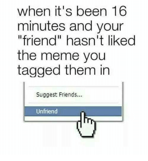 "Friends, Funny, and Meme: when it's been 16  minutes and your  ""friend"" hasn't likedd  the meme you  tagged them in  Suggest Friends...  Unfriend"