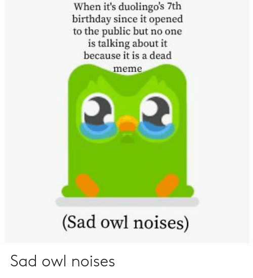 Birthday, Meme, and Sad: When it's duolingo's 7th  birthday since it opened  to the public but no one  is talking about it  because it is a dead  meme  (Sad owl noises) Sad owl noises