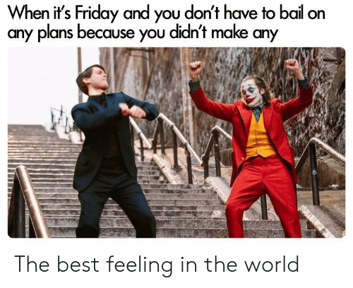 Friday, It's Friday, and Reddit: When it's Friday and you don't have to bail on  any plans because you didn't make any The best feeling in the world