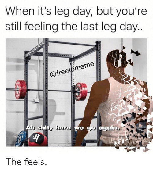 Shit, Leg Day, and Day: When it's leg day, but you're  still feeling the last leg day...  @freetomeme  GUE  @freetomeme  Ah shit, here we go again The feels.