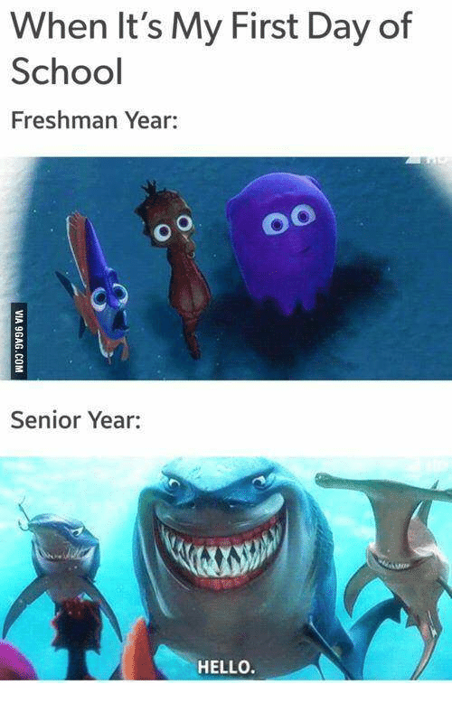 freshman year vs senior year essay Senior year is a year everyone remembers it is a stepping stone for teenagers to enter the real world they must stay on task in school in order to graduate, but also spend time with friends and have a good time before becoming adults.