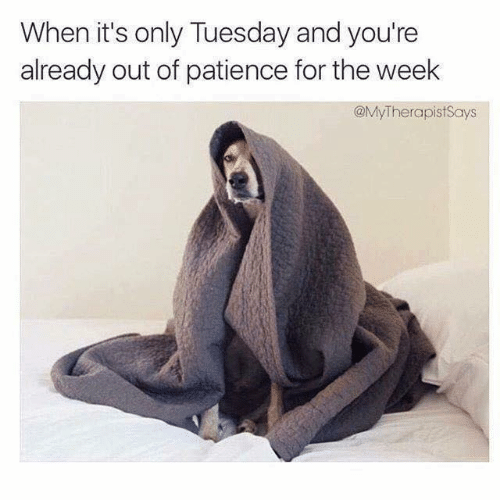 Patience: When it's only Tuesday and you're  already out of patience for the week  @MyTherapistSays
