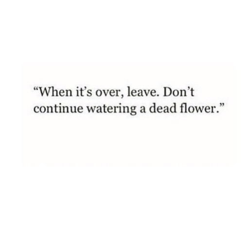 "Flower, Dead, and Continue: ""When it's over, leave. Don't  continue watering a dead flower."""