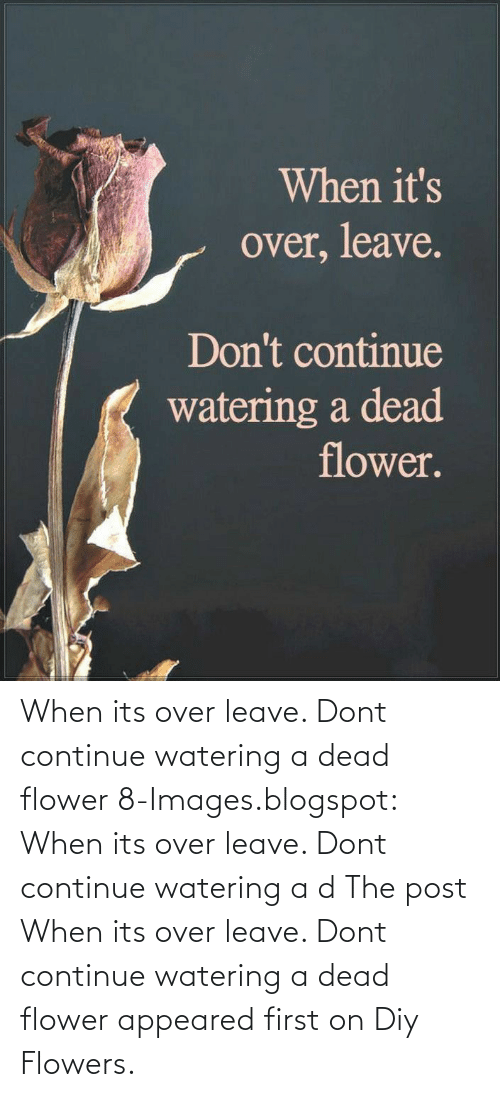 Blogspot: When its over leave. Dont continue watering a dead flower  8-Images.blogspot: When its over leave. Dont continue watering a d  The post When its over leave. Dont continue watering a dead flower appeared first on Diy Flowers.