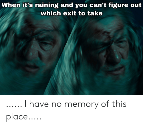Lord of the Rings, Memory, and You: When it's raining and you can't figure out  which exit to take ...... I have no memory of this place.....