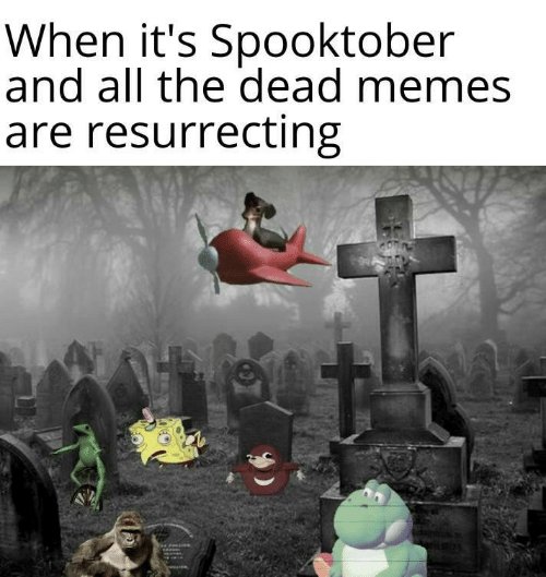 Memes, All The, and All: When it's Spooktober  and all the dead memes  are resurrecting