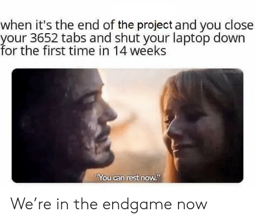 "endgame: when it's the end of the project and you close  your 3652 tabs and shut your laptop down  for the first time in 14 weeks  You can rest now."" We're in the endgame now"