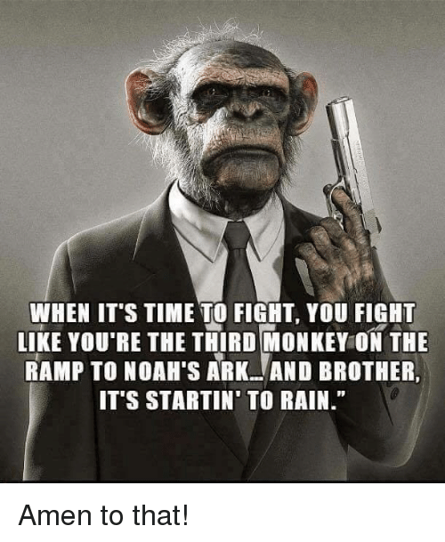 Amen To That: WHEN ITS TIME TO FIGH, YOU IGHT  LIKE YOU'RE THE THIRD MONKEY ON THE  RAMP TO NOAH'S ARKAND BROTHER,  IT'S STARTIN' TO RAIN. Amen to that!
