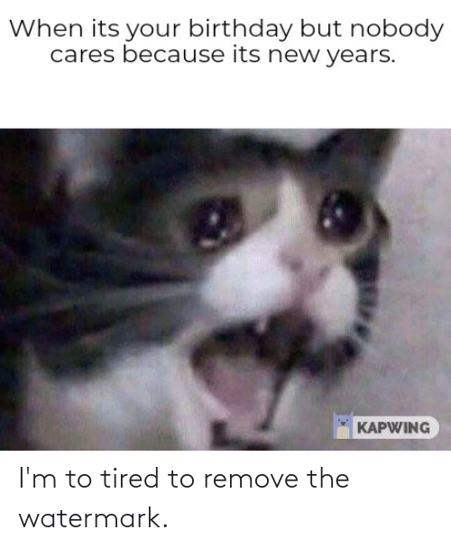 its your birthday: When its your birthday but nobody  cares because its new years.  KAPWING I'm to tired to remove the watermark.