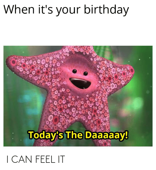 its your birthday: When it's your birthday  Today's The Daaaaay! I CAN FEEL IT
