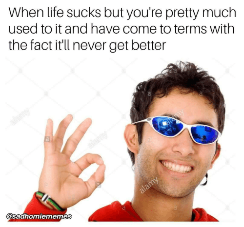 Life, Never, and Used: When life sucks but you're pretty much  used to it and have come to terms with  the fact it'll never get better  @saahomiememes