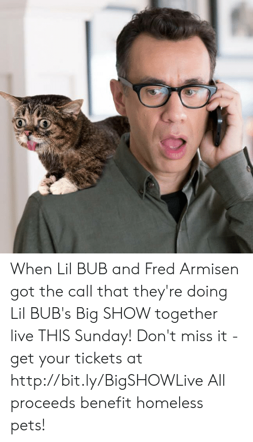 the call: When Lil BUB and Fred Armisen got the call that they're doing Lil BUB's Big SHOW together live THIS Sunday! Don't miss it - get your tickets at http://bit.ly/BigSHOWLive   All proceeds benefit homeless pets!