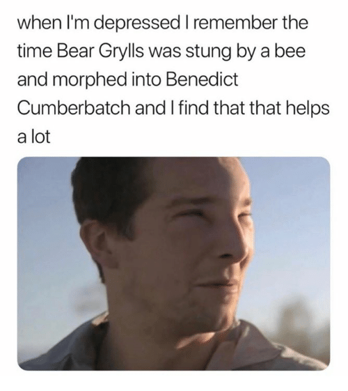 Bear Grylls: when l'm depressed remember the  time Bear Grylls was stung by a bee  and morphed into Benedict  Cumberbatch and I find that that helps  a lot