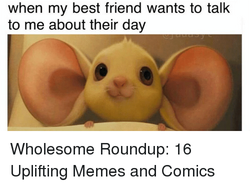 Uplifting Memes: when my best friend wants to talk  to me about their day <p>Wholesome Roundup: 16 Uplifting Memes and Comics</p>