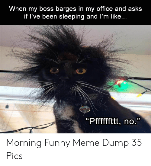 my boss: When my boss barges in my office and asks  if l've been sleeping and l'm like... Morning Funny Meme Dump 35 Pics