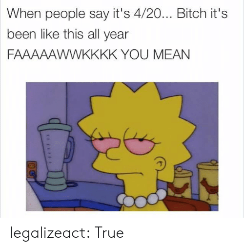 Bitch, True, and Tumblr: When people say it's 4/20... Bitch it's  been like this all year  FAAAAAWWKKKK YOU MEAN legalizeact:  True