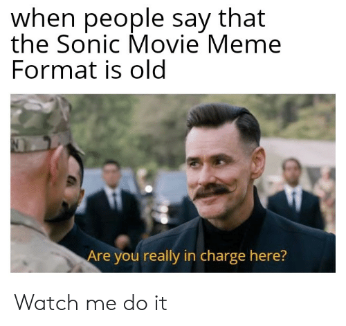 Movie Meme: when people say that  the Sonic Movie Meme  Format is old  Are you really in charge here? Watch me do it