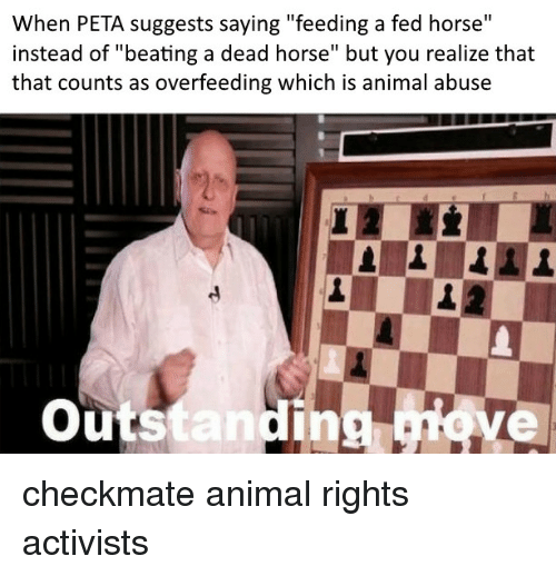 """Animal Abuse: When PETA suggests saying """"feeding a fed horse""""  instead of """"beating a dead horse"""" but you realize that  that counts as overfeeding which is animal abuse  outstanding ove  ing, checkmate animal rights activists"""