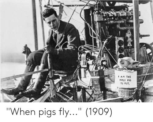 """fly: """"When pigs fly..."""" (1909)"""