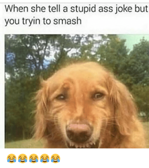 Telles: When she tell a stupid ass joke but  you tryin to smash 😂😂😂😂😂