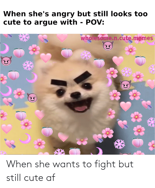 she wants: When she wants to fight but still cute af