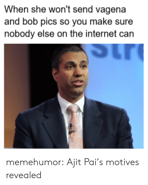 Internet, Tumblr, and Blog: When she won't send vagena  and bob pics so you make sure  nobody else on the internet can memehumor:  Ajit Pai's motives revealed