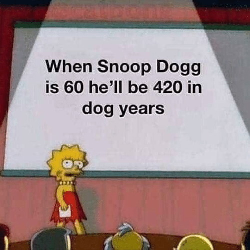 snoop dogg: When Snoop Dogg  is 60 he'll be 420 in  dog years