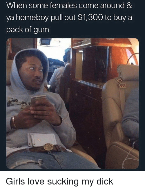 Girls, Love, and Dick: When some females come around &  ya homeboy pull out $1,300 to buy a  pack of gum  or The Girls love sucking my dick
