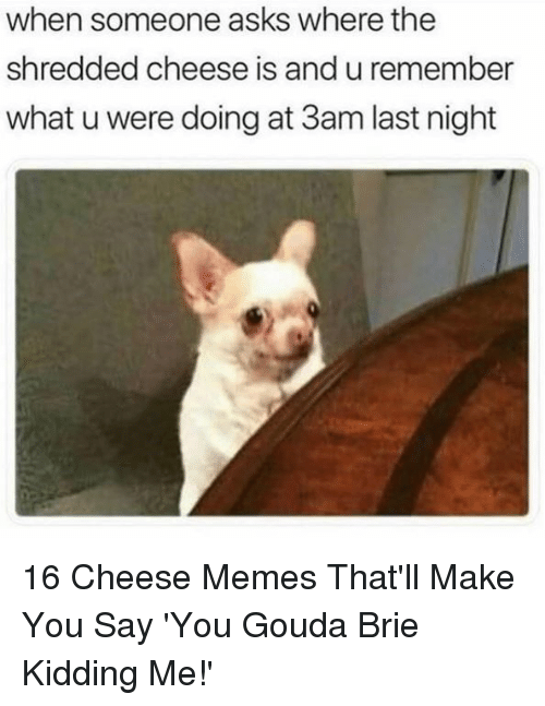 gouda: when someone asks where the  shredded cheese is and u remember  what u were doing at 3am last night 16 Cheese Memes That'll Make You Say 'You Gouda Brie Kidding Me!'