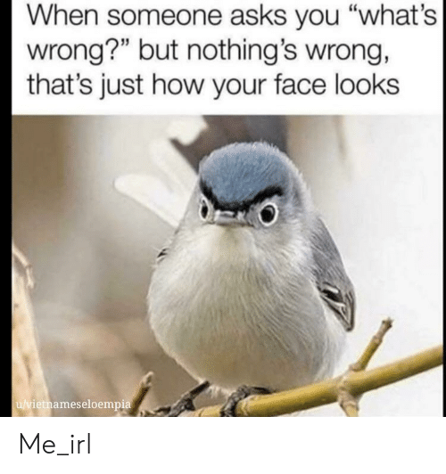 "Irl, Me IRL, and Asks: When someone asks you ""what's  wrong?"" but nothing's wrong,  that's just how your face looks  u/vietnameseloempia Me_irl"