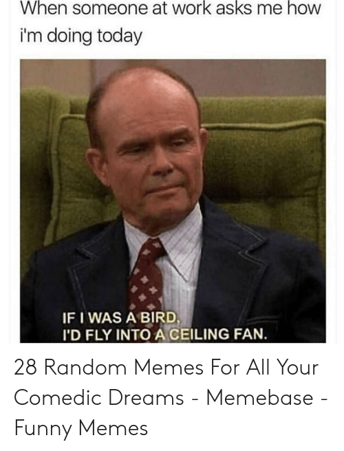 memebase: When someone at work asks me how  i'm doing today  IF I WAS A BIRD  I'D FLY INTO A CEILING FAN. 28 Random Memes For All Your Comedic Dreams - Memebase - Funny Memes