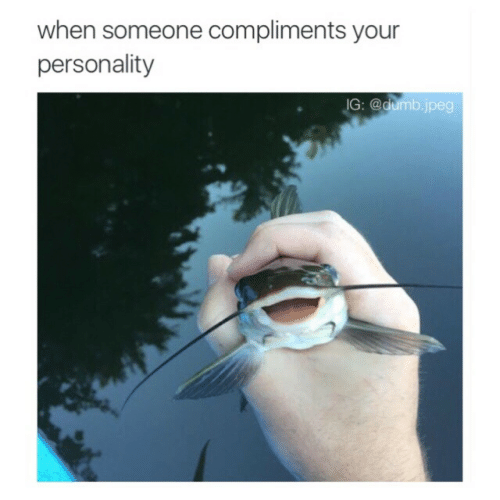 Someone Compliments: when someone compliments your  personality  G: @dumb.jpeg