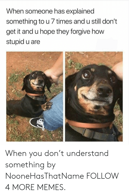 T Understand: When someone has explained  something to u 7 times and u still don't  get it and u hope they forgive how  stupid u are When you don't understand something by NooneHasThatName FOLLOW 4 MORE MEMES.