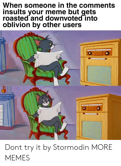 oblivion: When someone in the comments  insults your meme but gets  roasted and downvoted into  oblivion by other users Dont try it by Stormodin MORE MEMES
