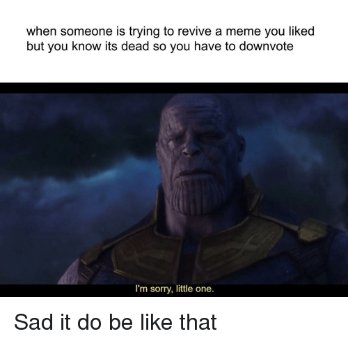 Be Like, Meme, and Sorry: when someone is trying to revive a meme you liked  but you know its dead so you have to downvote  I'm sorry, little one.