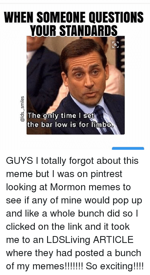 Mormon: WHEN SOMEONE QUESTIONS  YOUR STANDARDS  The enly time I se  e onl  the bar low is for limbo GUYS I totally forgot about this meme but I was on pintrest looking at Mormon memes to see if any of mine would pop up and like a whole bunch did so I clicked on the link and it took me to an LDSLiving ARTICLE where they had posted a bunch of my memes!!!!!!! So exciting!!!!