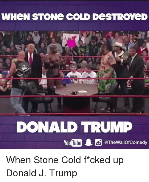Donald Trump You: WHeN STONe COLD DeSTROYeD  DONALD TRUMP  You  Thewallofcomedy When Stone Cold f*cked up Donald J. Trump