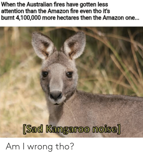 noise: When the Australian fires have gotten less  attention than the Amazon fire even tho it's  burnt 4,100,000 more hectares then the Amazon one...  [Sad Kangaroo noise] Am I wrong tho?