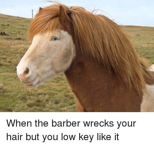 the barber: When the barber wrecks your hair but you low key like it